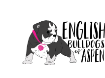 English Bulldogs of Aspen Logo