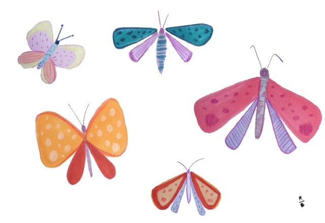 moth_inspired.jpg