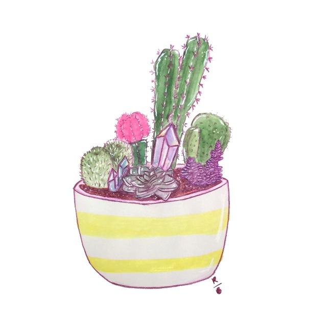 succulent3.jpg
